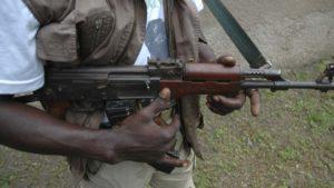 Unknown gunmen kill three Fulani herdsmen, nine cows in Kogi
