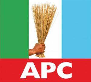 APC has never been a political party ― Nwodo