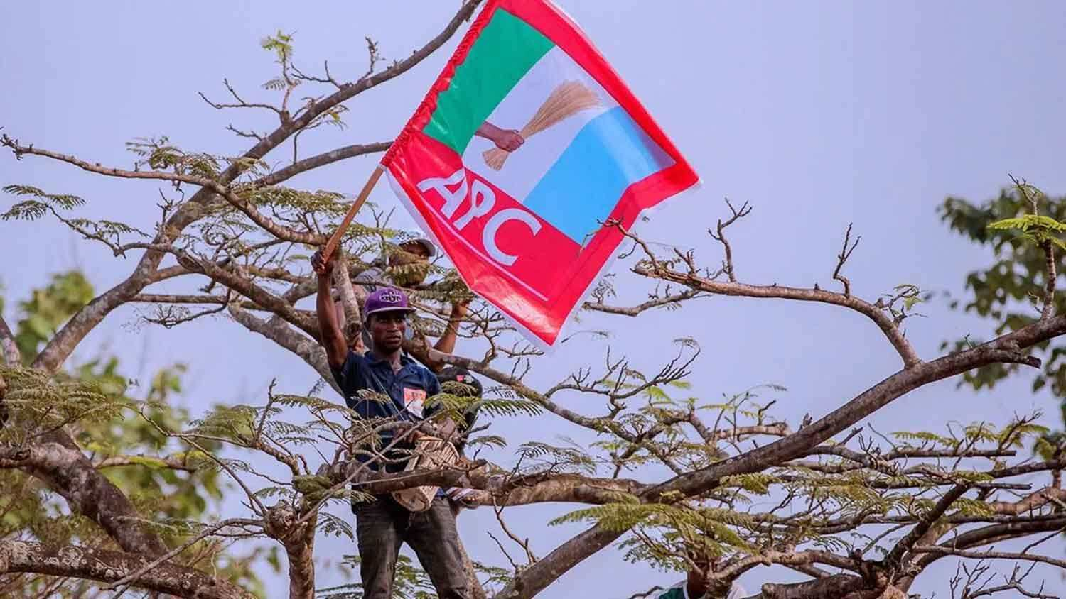 APC: A nest of self-centred politicians