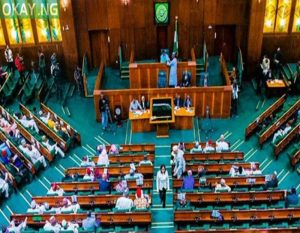 Reps urge FG to reconsider decision on SON, NAFDAC's ban from nation's ports, land borders
