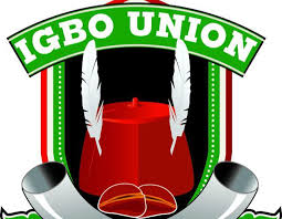 Igbo Union in US hits South East governors – The Sun Nigeria