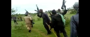 Cattle thieves kill 10 vigilantes in Zamfara ― Police