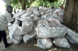 Cannabis most trafficked drug in Nigeria ― Report