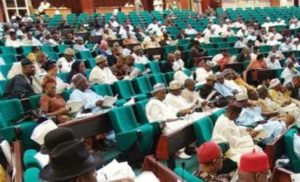 Reps kick over N186bn spent on FG school feeding programme –