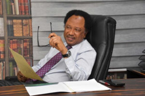 What I know about my father's relationship with Shehu Sani, witness tells court