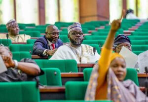 Reps fault FG's decision on school reopening – Punch Newspapers