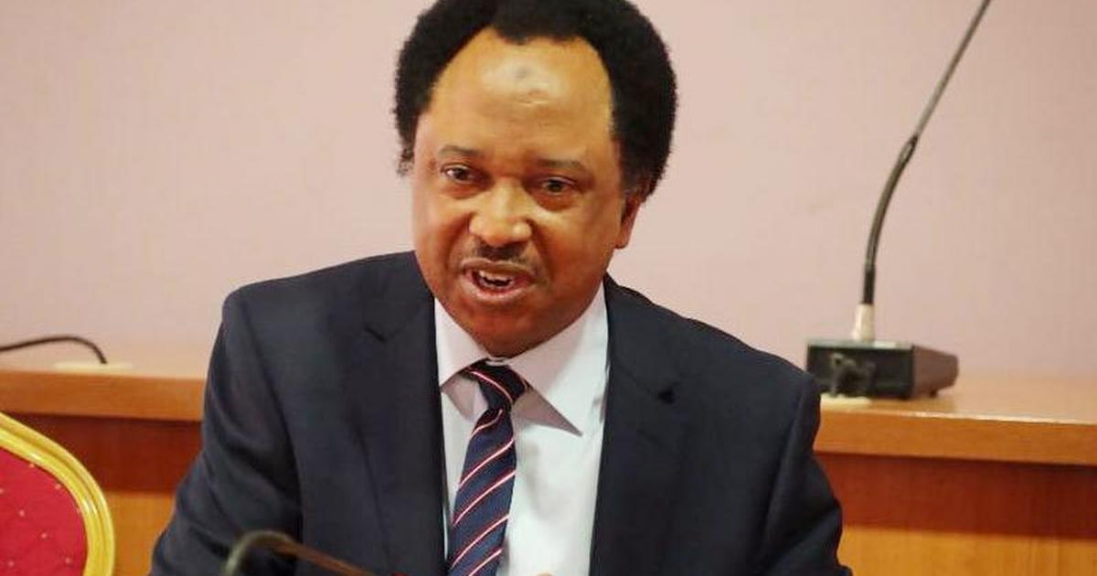 Shehu Sani asked me to give 4 judges N1m each – Witness tells court [ARTICLE]