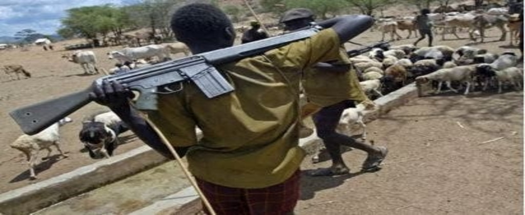 I was gang-raped by herdsmen, offered blood to drink as water — Kidnapped victim