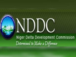 NDDC Probe Reflects Nigeria's Systemic Failure