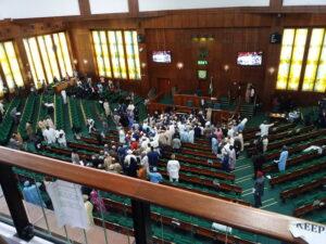 House Caucus Decries Killings in Southern Kaduna