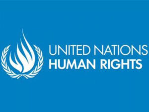 Huriwa Drags Nigeria To Un Human Rights Council Over Stifling Of Rights Commission's Independence: