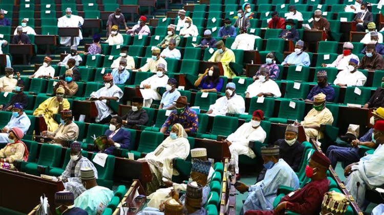 We must review Chinese, other loan agreements, Reps insist – Punch Newspapers