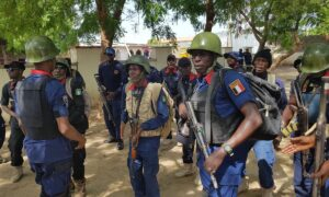 Kebbi NSCDC resolves 30 cases of farmers, herders clashes – The Sun Nigeria