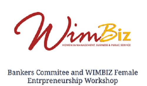 Electoral violence, funding, others, threats to female participation — WIMBIZ