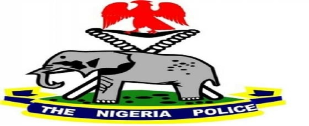 Borno police parades 45 criminal suspects for various offences