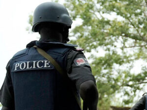 PSC: Police Must Operate Within the Law in Edo, Ondo Elections