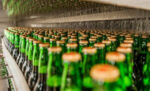 Closure of beer parlours, brothels reduced criminalities