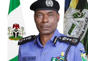IG deploys DIG, AIG, eight CPs for Edo polls – Punch Newspapers