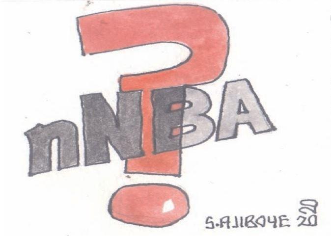 nNBA's fool's errand – Latest Nigeria News, Nigerian Newspapers, Politics
