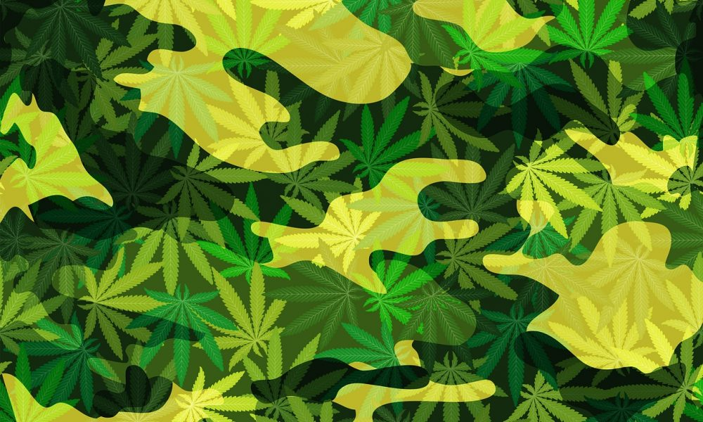Military Veterans Group Asks Federal Court To Hear Marijuana Case Challenging DEA Classification