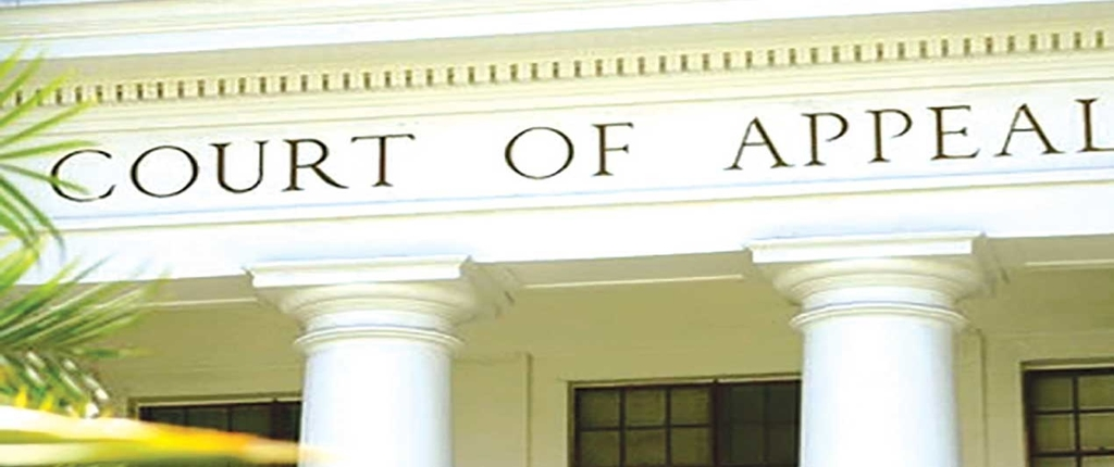 OVERVIEW OF THE JURISDICTION OF THE COURT OF APPEAL IN NIGERIA